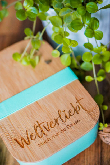 Bambus-Brotdose-Lunchbox-6